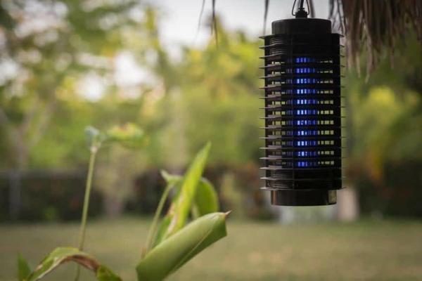 mücken vertreiben lampen garten
