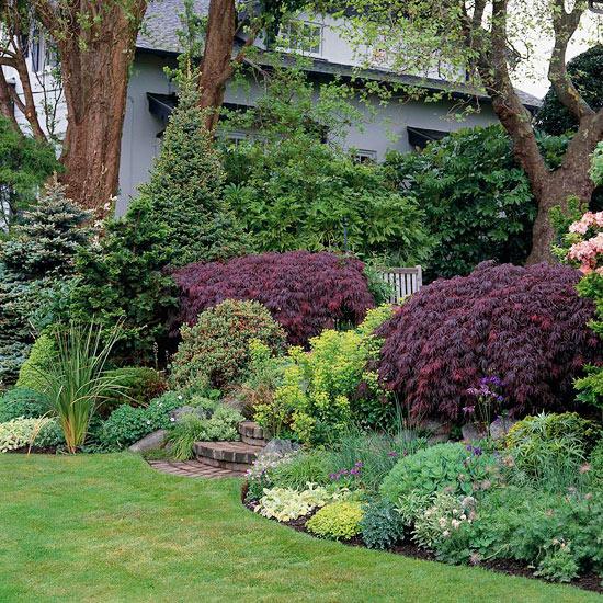 mehr Farbe in den Garten bringen Farbkontraste erstellen verschiedene Grünpflanzen buntes Laub