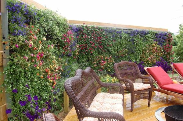 natürlicher Sichtschutz blühende Hecke frische Farben