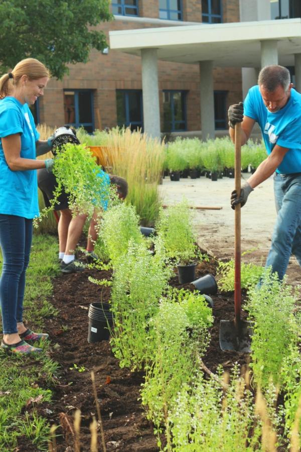 Natürliche Sichtschutz Ideen Gartenpflanzen