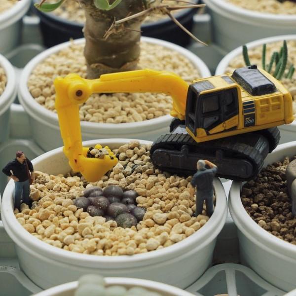 Construindo um diorama - ideias criativas e dicas para artistas e amadores que constroem trabalhos em uma panela
