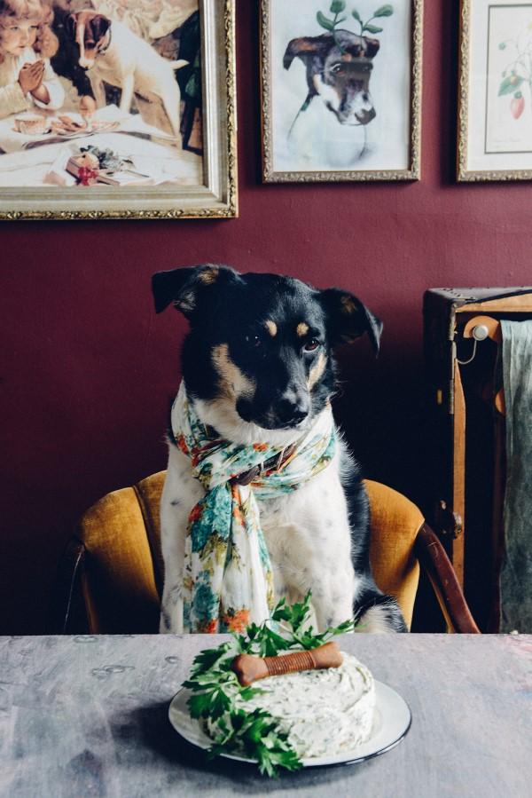 Gesunde Hundekuchen Rezeptideen, die Bello glücklich machen liebevolle ideen für hunde