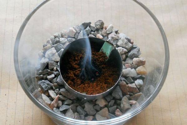 Remédios caseiros para mosquitos Queime borra de café no jardim