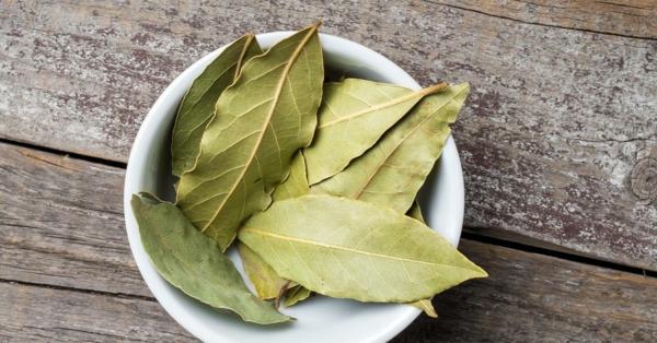 Remédios caseiros contra mosquitos Borra de café e folhas de louro