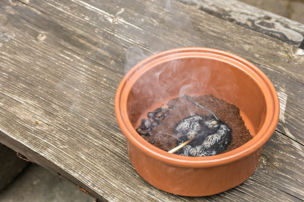 Remédios caseiros para mosquitos queimam borra de café