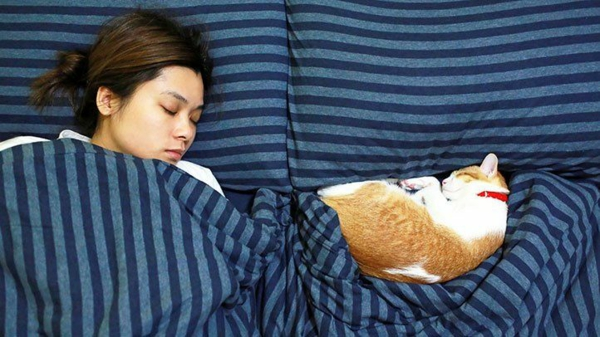 Hausmittel gegen Migräne genügend Schlaf