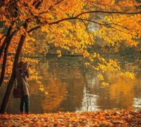 Den Wechsel der Jahreszeiten (Sommer-Herbst) entspannt empfangen