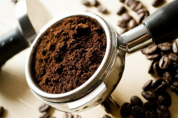 O pó de café beneficia o repelente natural de insetos