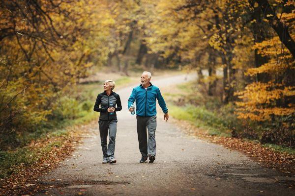 Spaziergang Jahrestrends Tendenzen Ideen