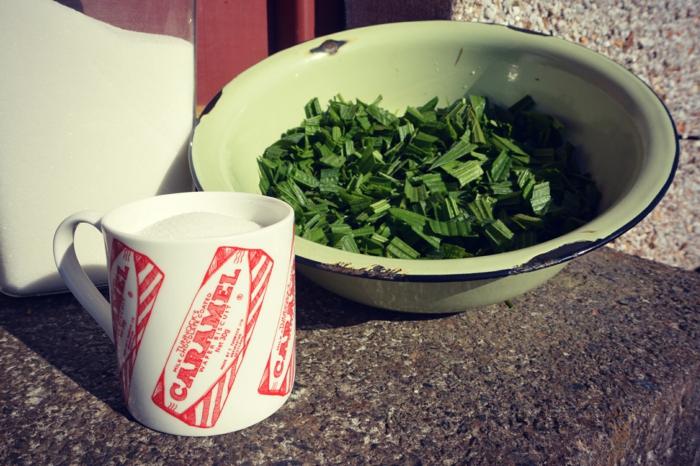 Spitzwegerich Tee oder Hustensaft salbe zubereitung hustensaft