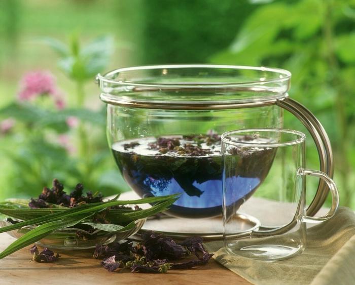 Spitzwegerich Tee oder Hustensaft salbe zubereitung zu Hause