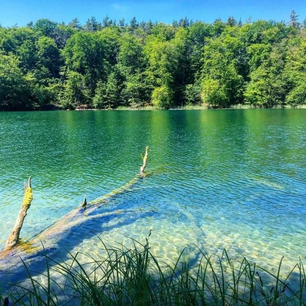 Top 10 der schönsten Seen in Deutschland für Ihre Reiseliste Großer Stechlinsee