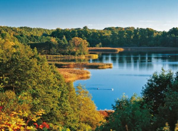 Top 10 der schönsten Seen in Deutschland für Ihre Reiseliste Schaalsee