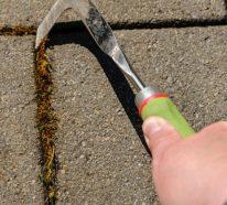Unkraut aus Fugen entfernen- einfach, schnell und umweltfreundlich