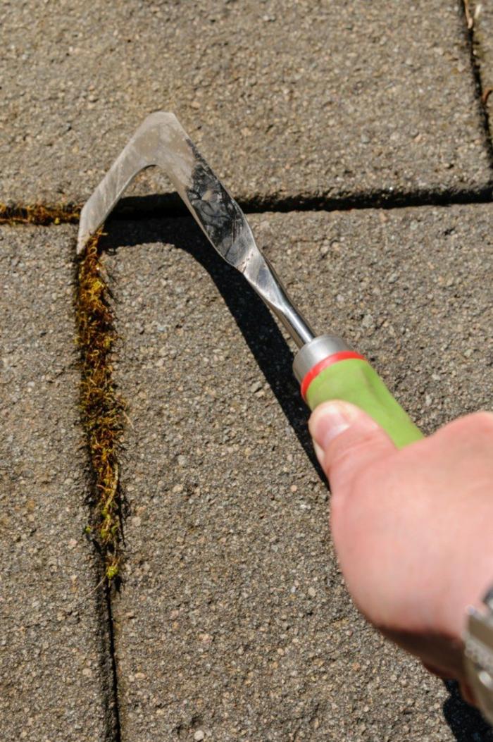 Unkraut aus Fugen entfernen werkzeug manuel
