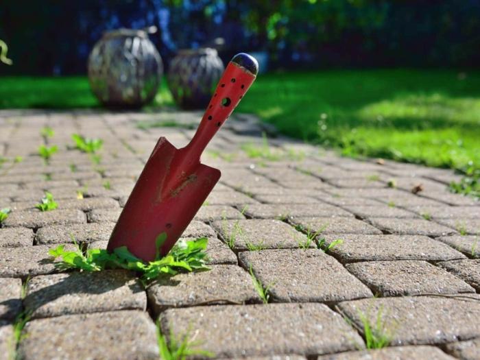 Unkraut aus Fugen entfernen werkzeug unkraut jäten