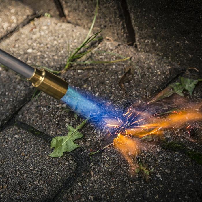 Unkraut aus Fugen entfernen werkzeug verbrennen