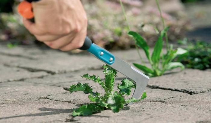 Unkraut aus Fugen entfernen werkzeug