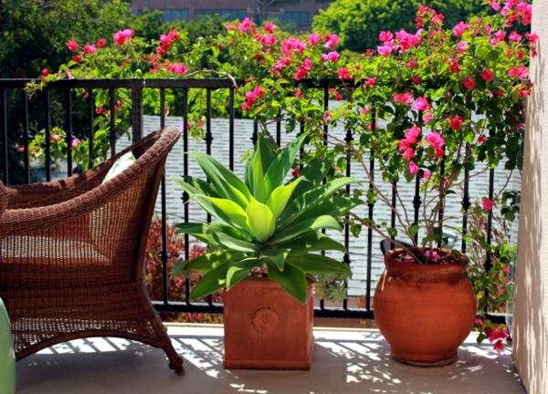 balkon sichtschutz ideen balkonpflanzen funktional ausnutzen