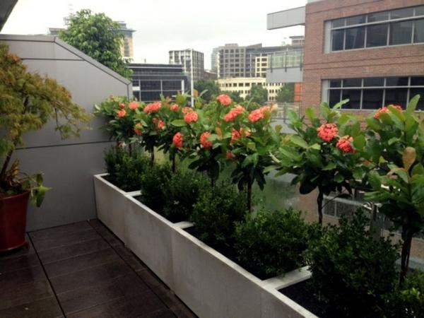 balkon sichtschutz ideen große pflanzkasten schöne dekoideen