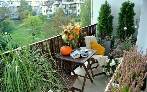 balkon sichtschutz ideen kleiner balkon ideen pflanzen