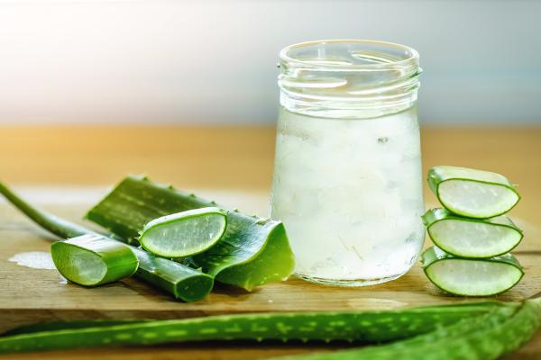 erfrischende Sommergetränke Aloe Vera Wasser zu Hause zubereiten