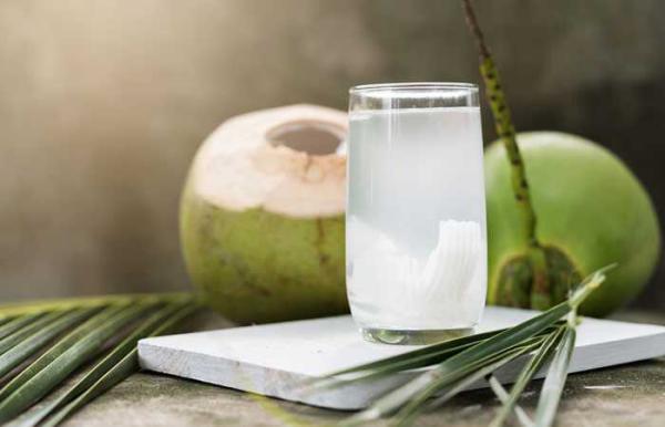 erfrischende Sommergetränke frisch zubereitetes Kokoswasser mit exotischem Beigeschmack