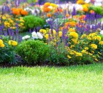10 Ideen, die Ihren Garten in eine Wohlfühloase verwandeln