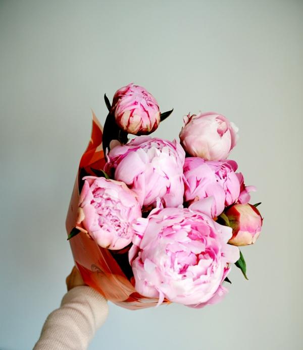 pfingstrosen in der vase pfingstrosen schnittblumen blumenstrauß