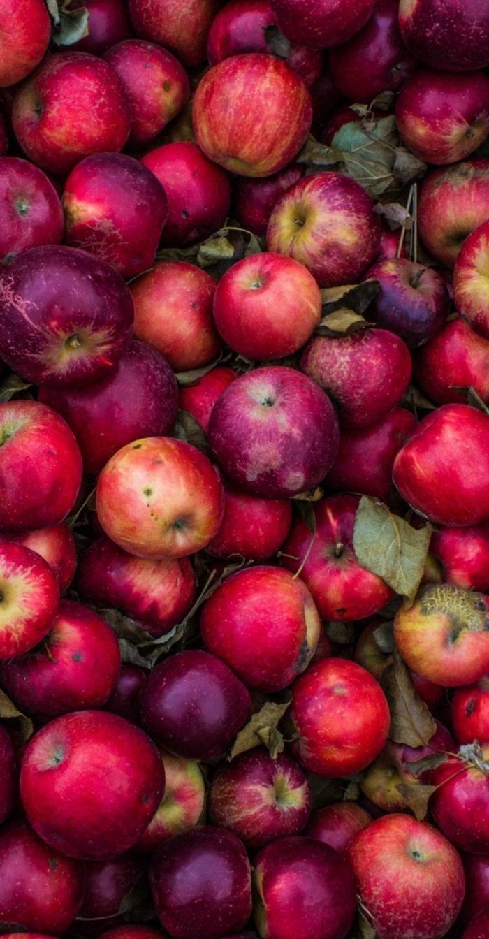 äpfel dörren apfelsorte