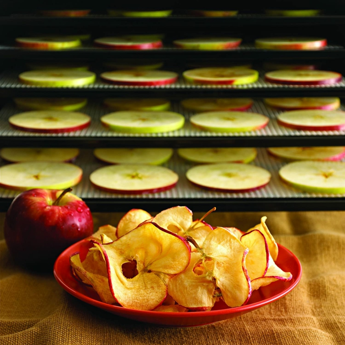äpfel dörren im backofen