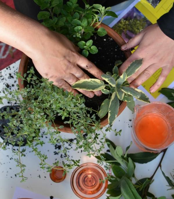 10 possíveis erros que novos jardineiros cometem