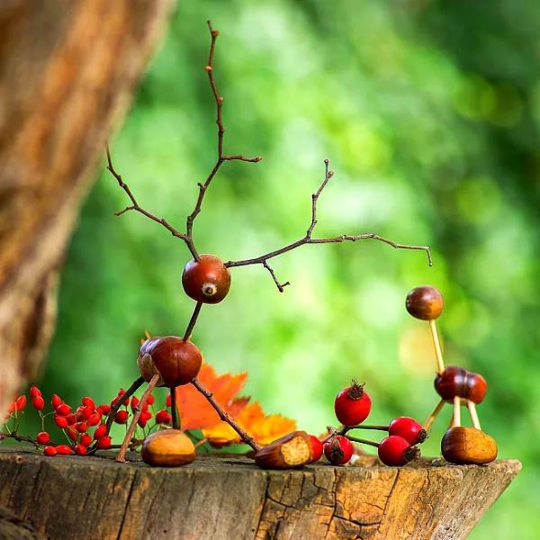 Basteln zum Herbst mit Naturmaterialien aus dem Garten oder Park eicheln figuren einfach süß