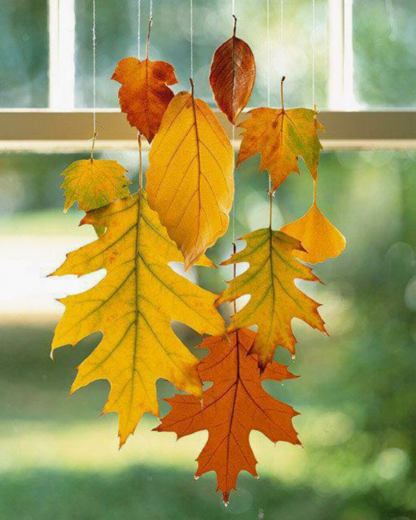 Basteln zum Herbst mit Naturmaterialien aus dem Garten oder Park herbst deko blätter