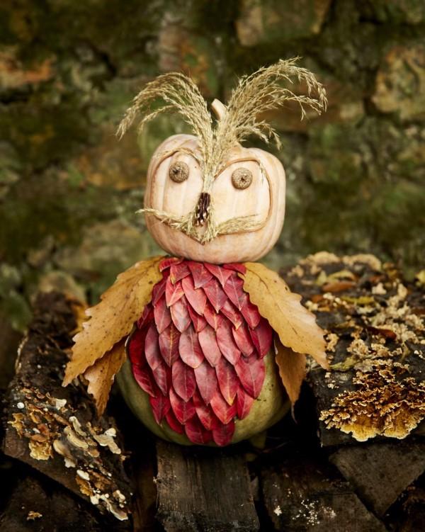 Basteln zum Herbst mit Naturmaterialien aus dem Garten oder Park kürbisse eule diy