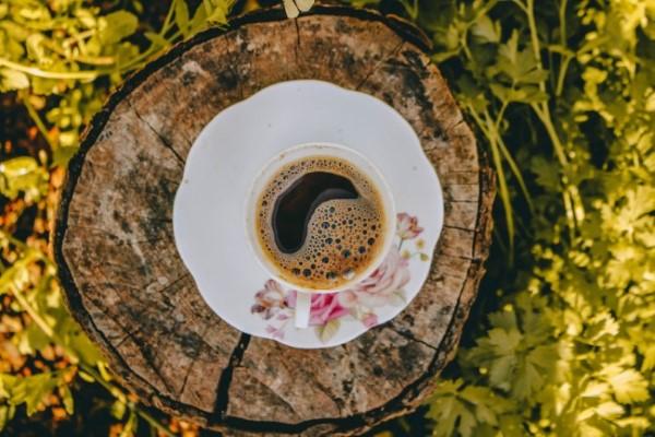 Baumstumpf dekorieren – kreative Ideen mit Liebe zur Natur beistell tisch kaffee