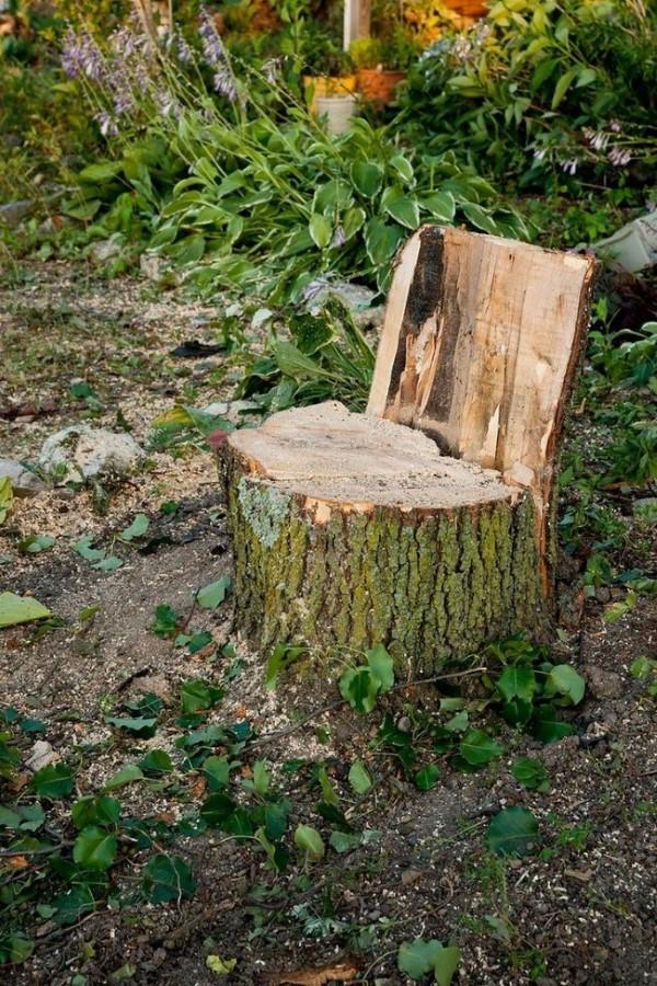 Baumstumpf dekorieren – kreative Ideen mit Liebe zur Natur stuhl mit rückenlehne