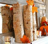 Holen Sie sich den Herbst ins Haus mit diesen natürlichen Herbstdeko-Ideen!