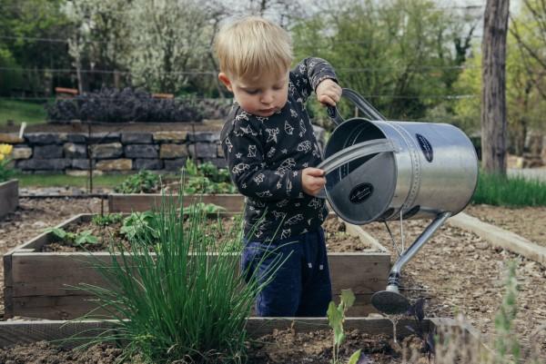 Ein Kleiner Gemüsegarten vor der Haustür – die Vorteile des eigenen Gemüseanbaus kinder lieben natur lernen