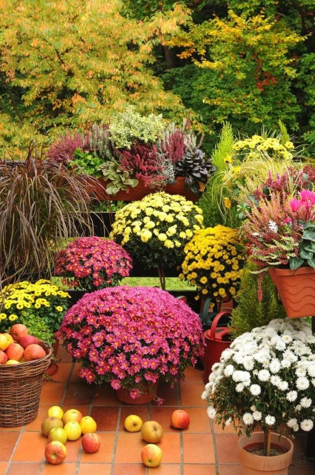 Einen märchenhaften Herbstgarten gestalten – farbenfrohe Ideen und Tipps bunte blumen deko garten