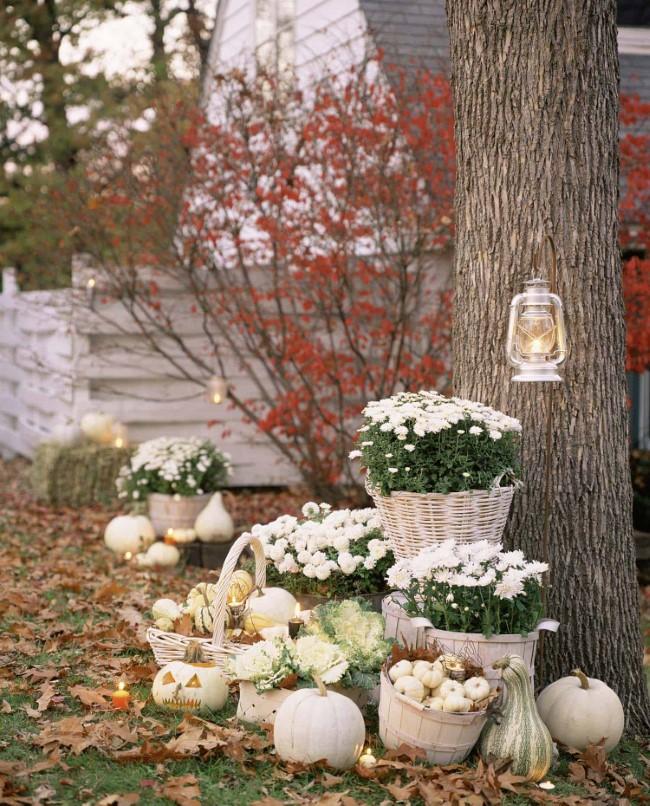 Einen märchenhaften Herbstgarten gestalten – farbenfrohe Ideen und Tipps deko mit weißen kürbissen