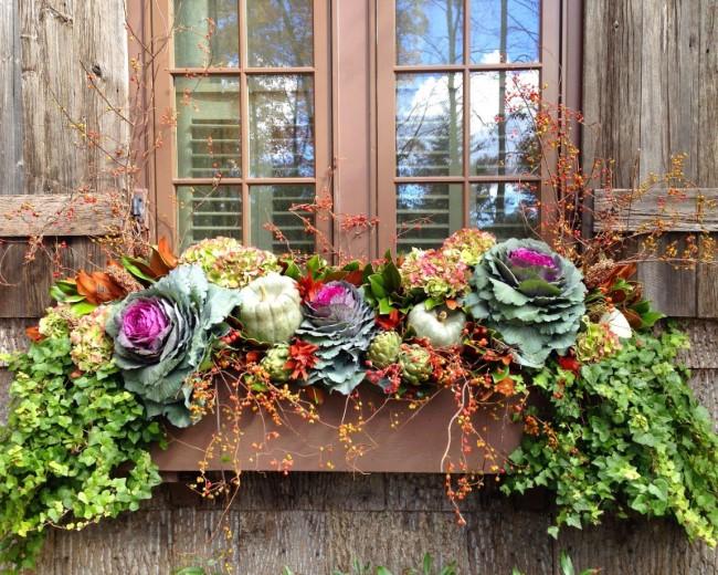 Einen märchenhaften Herbstgarten gestalten – farbenfrohe Ideen und Tipps fensterbox ideen zierkohl