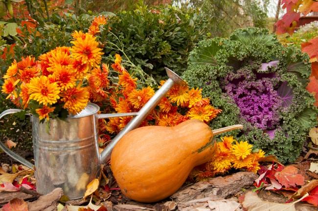 Einen märchenhaften Herbstgarten gestalten – farbenfrohe Ideen und Tipps gießkanne deko blumen