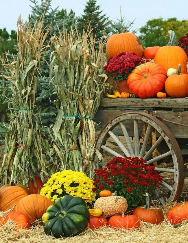 Einen märchenhaften Herbstgarten gestalten – farbenfrohe Ideen und Tipps herbstzeit erntezeit deko ideen