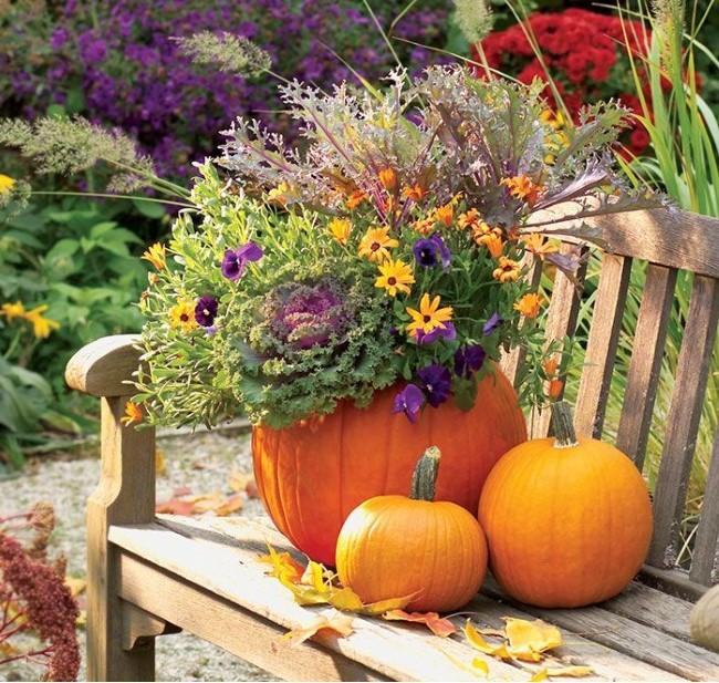 Einen märchenhaften Herbstgarten gestalten – farbenfrohe Ideen und Tipps holzbank rustikal deko