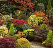 Einen märchenhaften Herbstgarten gestalten – farbenfrohe Ideen und Tipps