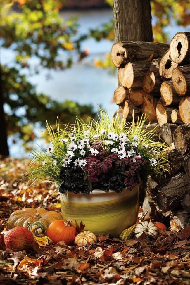 Einen märchenhaften Herbstgarten gestalten – farbenfrohe Ideen und Tipps schöne ideen garten