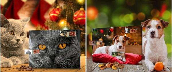 Foto-Adventskalender bestellen und die Vorweihnachtszeit voll auskosten4