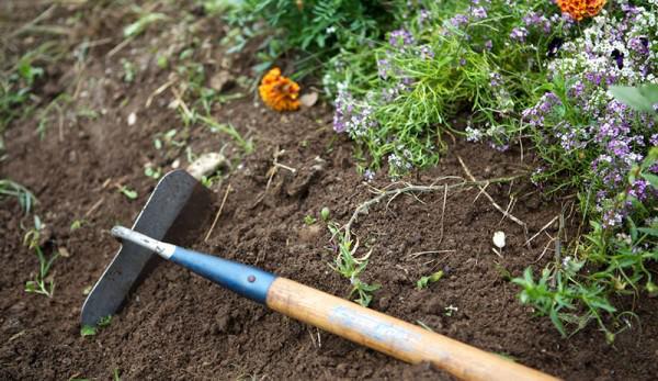 Gartenarbeit im Oktober Gartengeräte und Werkzeuge sauber machen und ins Winterquartier bringen