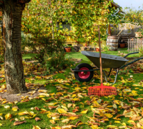Gartenarbeit im Oktober: bereiten Sie Ihren Garten für den Winter vor!